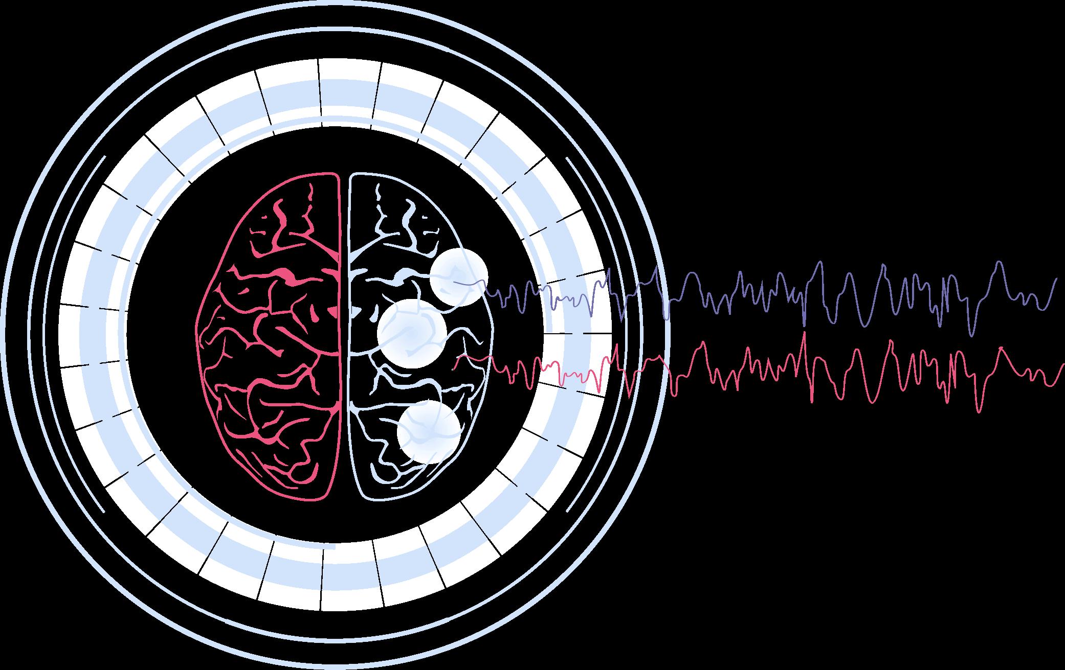 Group-708 - Neuroscience Software